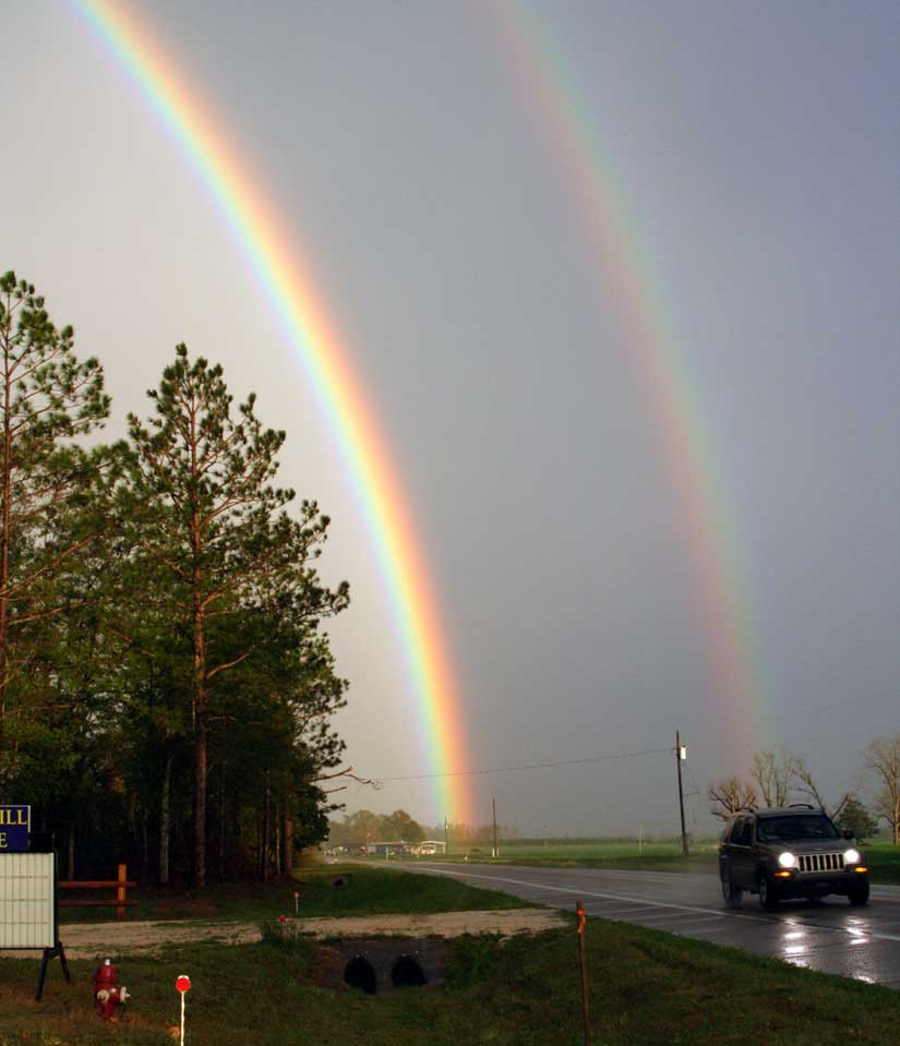 rainbow10.jpg