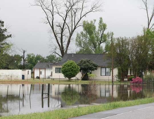 floodbratt.jpg