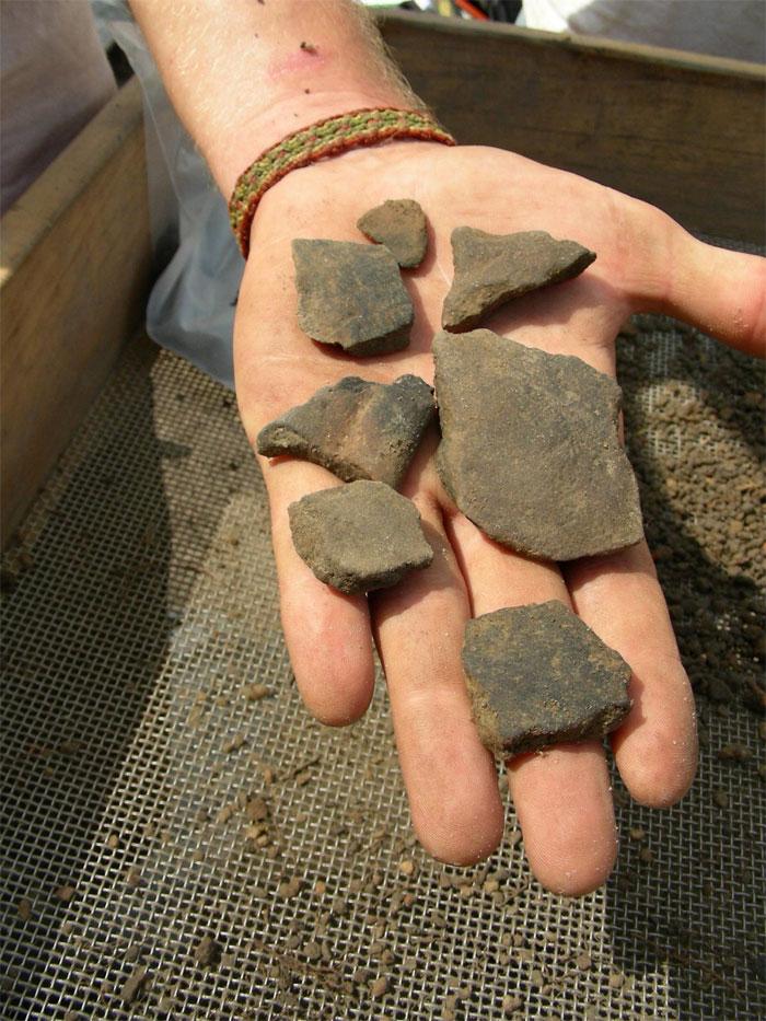 Dating florida indian pottery shards
