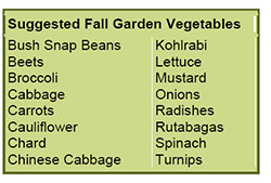fall-garden-veggies.jpg