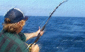 Cost of some hunting fishing permits headed up new deer for Florida non resident saltwater fishing license