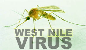Mosquito Borne Illness Alert Continues After West Nile Cases Confirmed