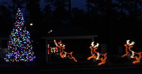 Century To Hold Christmas Tree Lighting Ceremony
