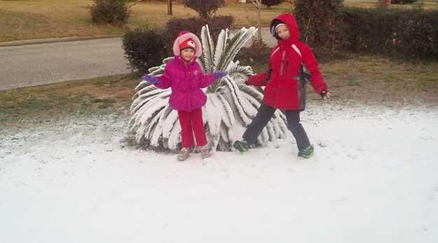more local winter photos including snow northescambiacom