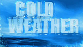 Freeze Warning — Protecting Pets, Plants, Pipes And Other Tips