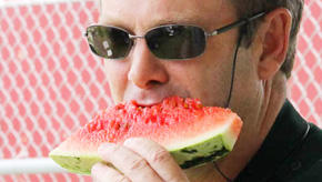 Too Hot For Watermelon: Festival Moved To November