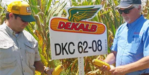 Field Corn Variety Tour Held