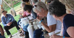 All About Peanuts: 48th Annual Santa Rosa Farm Tour Held