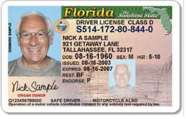 sample of Florida State Driver's License