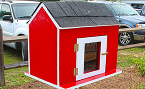 Little Free Library Available At Carver Park In Cantonment