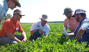 Extension Farm Field Day Held