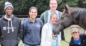 UWF Pre-Vet Society Volunteers At Panhandle Equine Rescue
