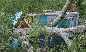 Storms Cause Damage In Atmore, Walnut Hill, Cottage Hill (With Gallery)