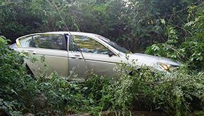 Driver Flees Cottage Hill Wreck