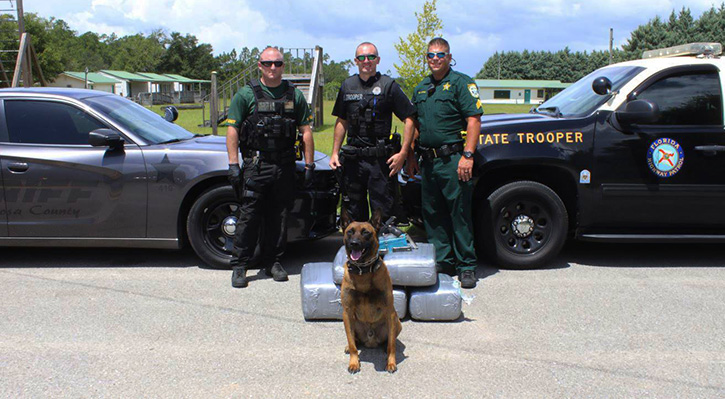 Florida Highway Patrol Traffic >> Deputies Fhp Seize 113 000 Worth Of Pot In Traffic Stop