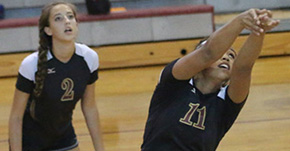 Volleyball: PHS Downs Northview