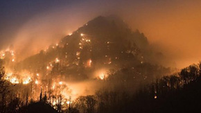 Local Resident Escapes Gatlinburg Fires