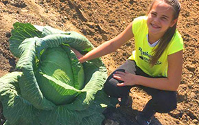 Local Student Grows Giant Cabbage