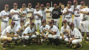 Tate Regional Final Game Moved To Wednesday; Baseball Fish Fry Set
