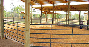 New Barn Planned For Escambia County 4-H Facility In Molino