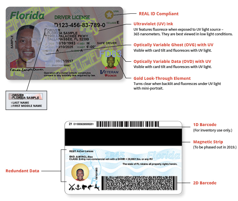Out Licenses Driver's More Redesigned Secure Northescambia Rolls Florida com