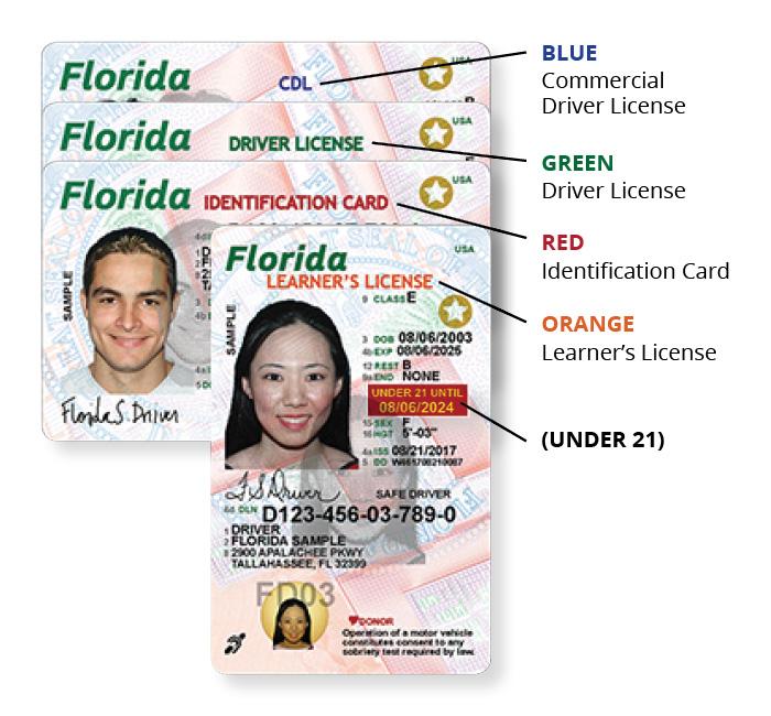 Florida Drivers License Miami Beach