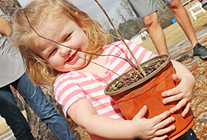 Century Celebrates Tornado Recovery With Tree Giveaway
