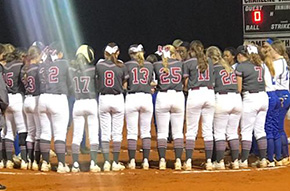 Wins For Tate, Northview, West Florida In Softball, Baseball