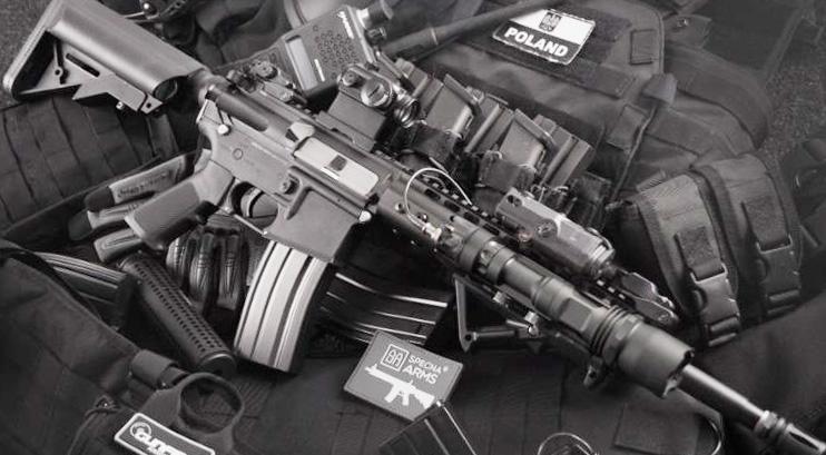 Gun Restrictions Won't Go On November Ballot : NorthEscambia com