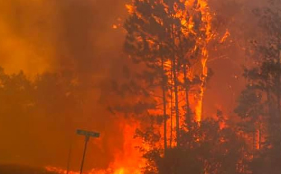 Wildfires force evacuations in Florida