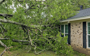 Storms Down Trees, Damage At Least One Home In Gonzalez; Lightning Strikes Mobile Home